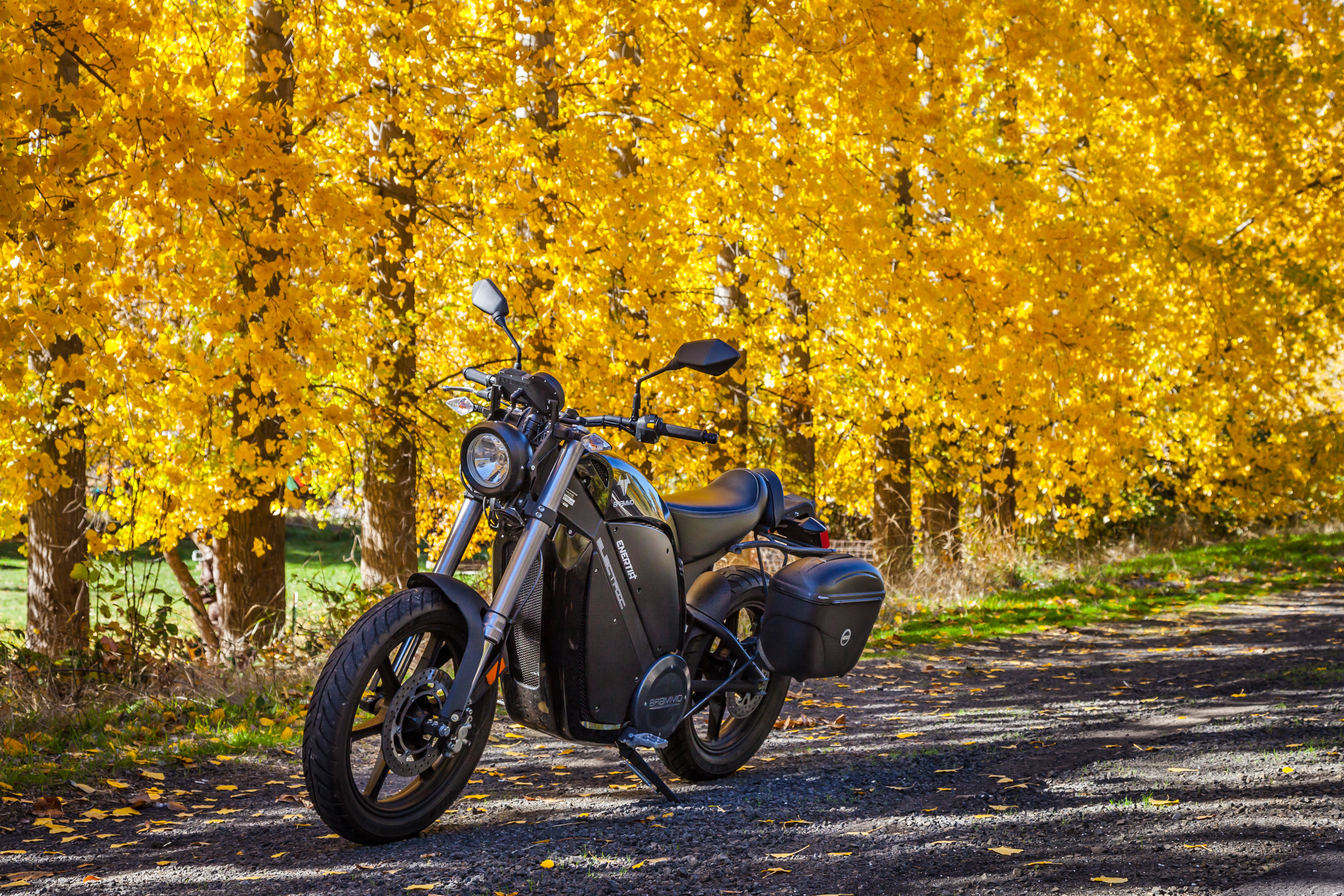 Golden Autumn Ride...