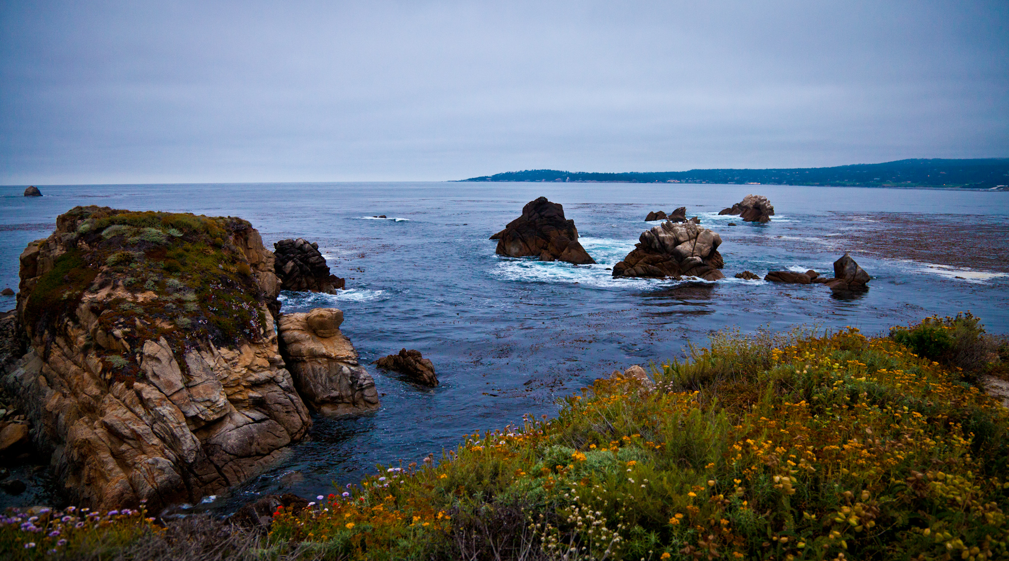 "A side trip to Point Lobos just before the Leguna Seca racing event... I had to get my ""ocean fix"" in while at Monterey."