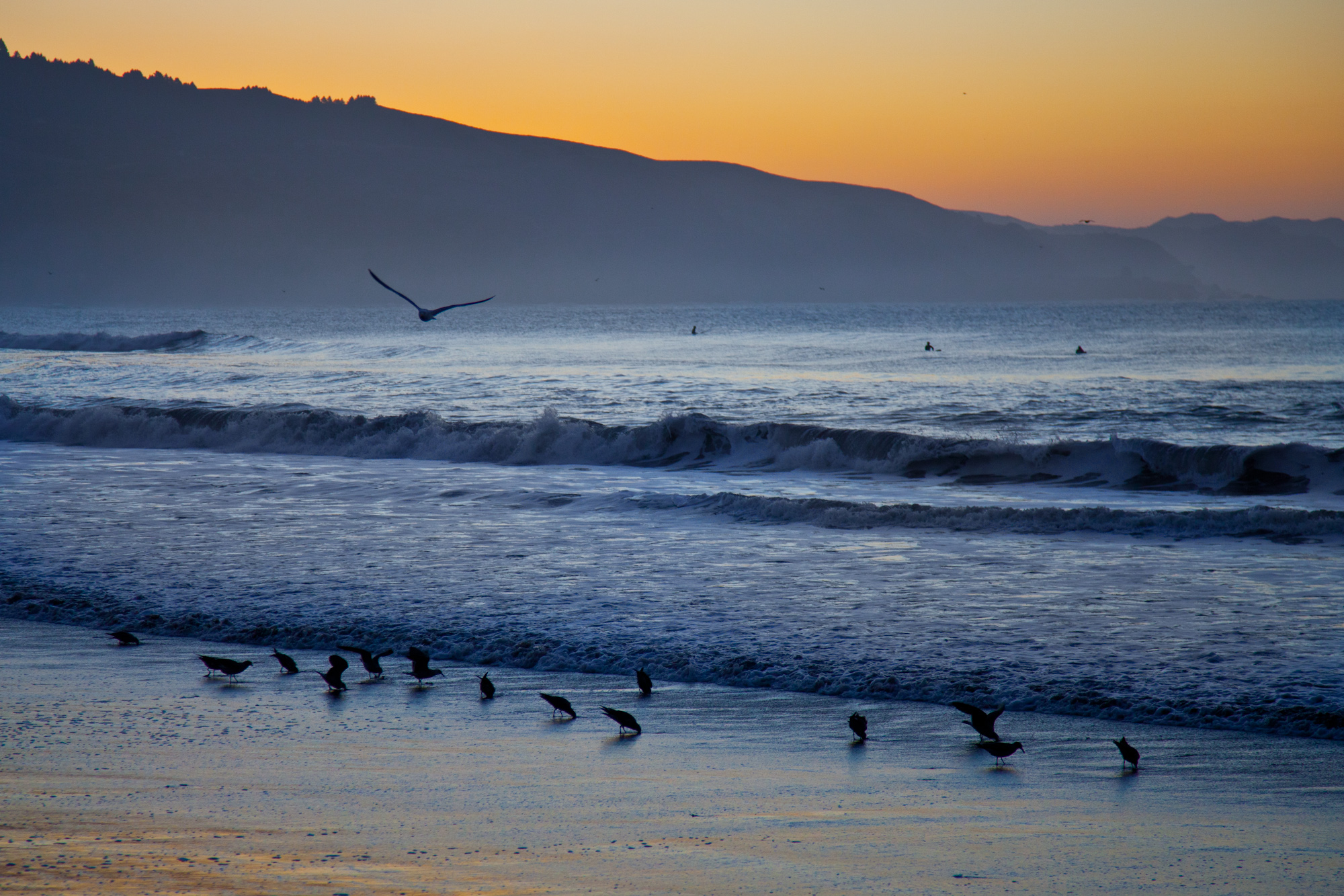 Dawn at Bolinas... the surfers were already out well before sunrise.