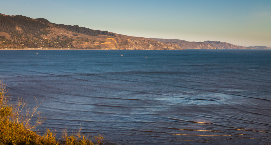 View of the Pacific from the Bolinas Mesa.